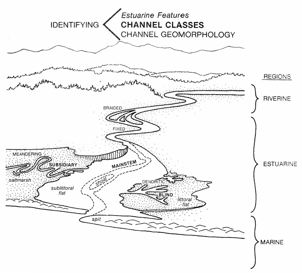 Estuarine Channel Classes